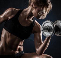 gym-equipments-manufacturers-in-meerut
